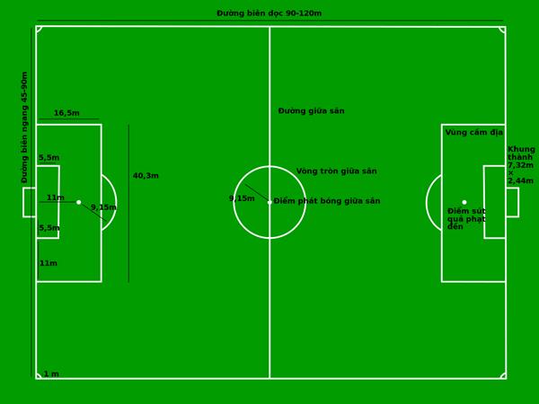 Tìm hiểu diện tích sân bóng đá 11 người tiêu chuẩn FIFA