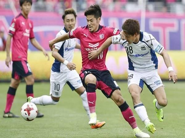 Nhận định tỷ lệ Cerezo Osaka vs Albirex Niigata (17h00 ngày 4/8)